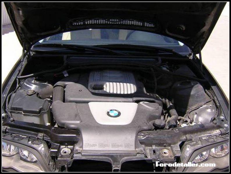 Detallado del motor                                        4.63/5(8)